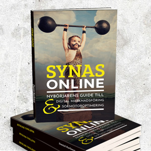 synas online